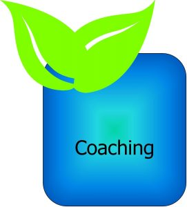 Square Leaf box - Coaching